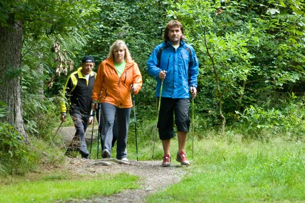Nordic-Walking-button