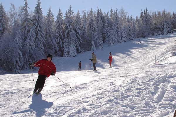 ski-button