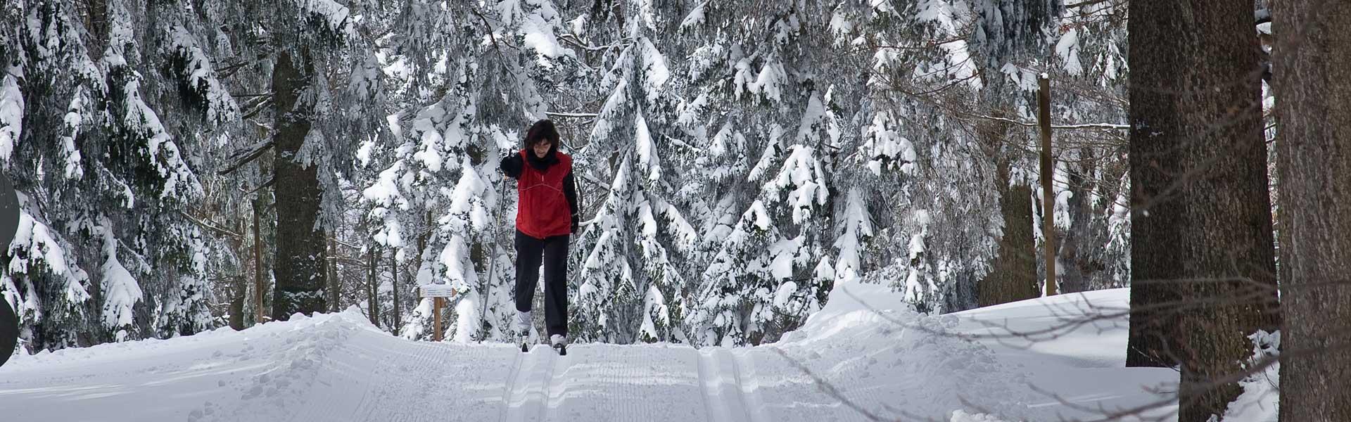 Langlaufen in Waldkirchen – quer durchs Winterwunderland