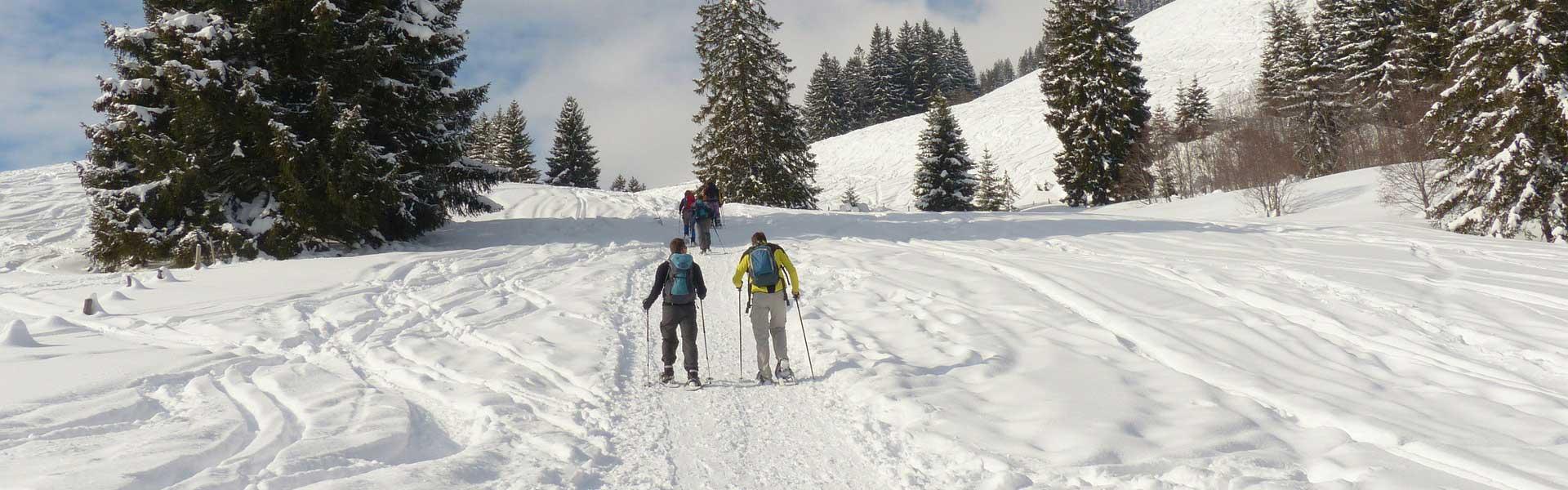 Schneeschuh-Wandern in Waldkirchen – Naturerlebnis pur