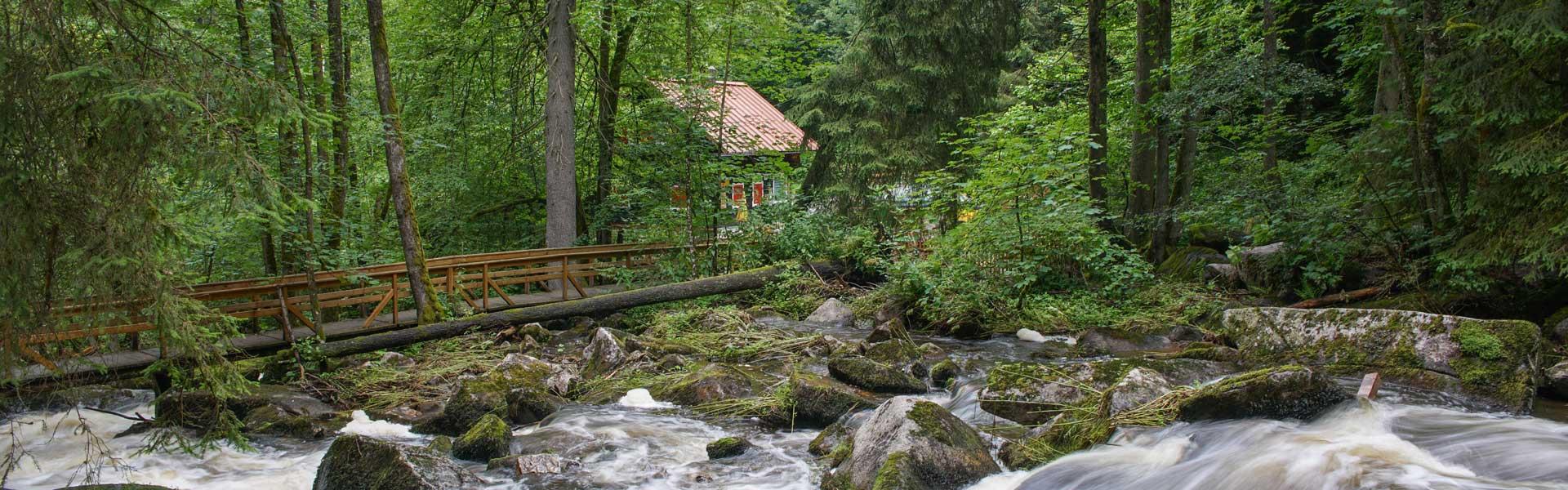 Wandern in Waldkirchen